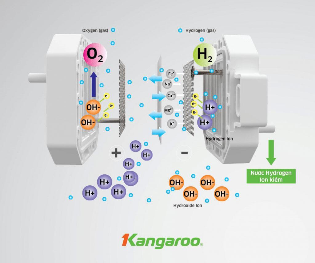 Máy lọc nước Kangaroo Hydrogen ion kiềm KG100EED